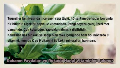 Rokanın Faydaları ve Rokada Hangi Vitaminler Bulunur