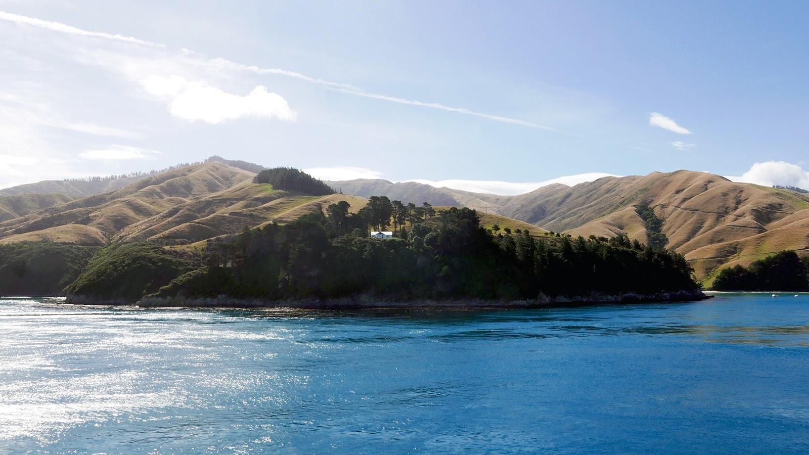 Euriental   luxury travel & style   Wellington to Picton ferry journey, New Zealand
