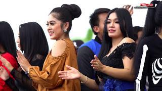 All Artis Monata - Pulang Kampung Mp3
