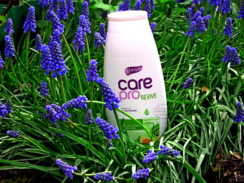 LUKSJA- Care pro REVIVE