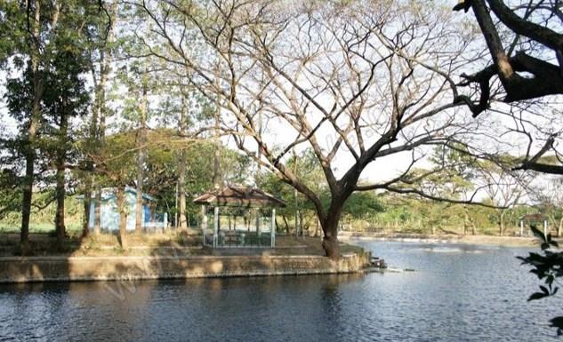Gazebo danau ronnggojalu