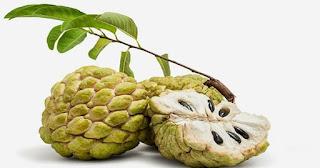 فوائد فاكهة القشطة للبواسير