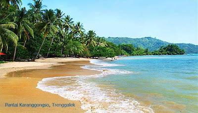 Karanggongso beach, Terri