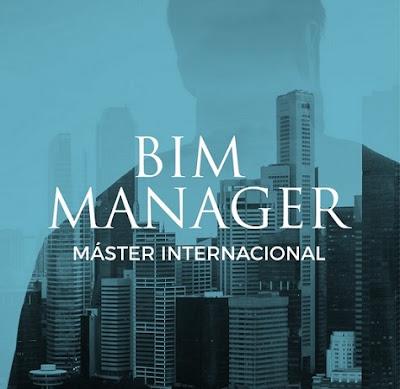 BIM Manager