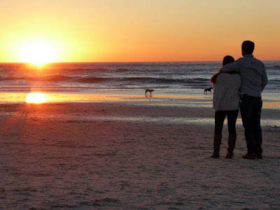 couple and dog on a beach watching the sunset