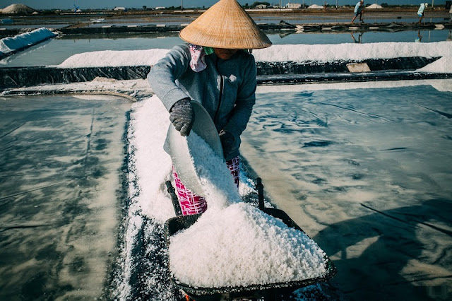 Immense salt fields boast their stunning beauty in scorching sun 4