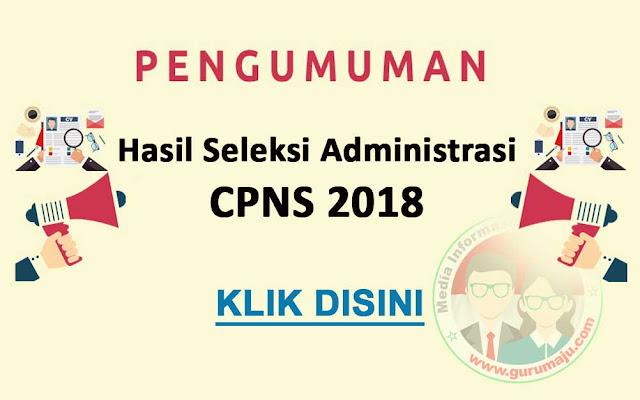 2 Cara Melihat Pengumunan Hasil Seleksi Administrasi CPNS 2018
