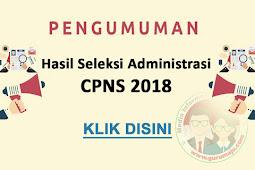 Lihat Pengumunan Hasil Seleksi Berkas Administrasi CPNS 2018