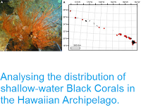 http://sciencythoughts.blogspot.co.uk/2015/05/analysing-distribution-of-shallow-water.html