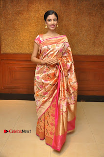 South Indian Celebrities Pos at Love For Handloom Collection Fashion Show  0117.jpg