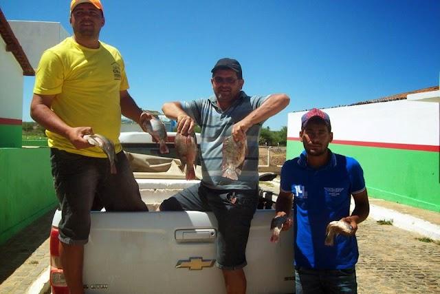 Prefeitura Municipal de Amparo estará distribuindo Peixes para população de Baixa Renda