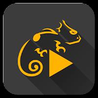 Stellio Music Player Unlocker Apk Free Download
