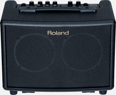 loa di dong Roland AC33
