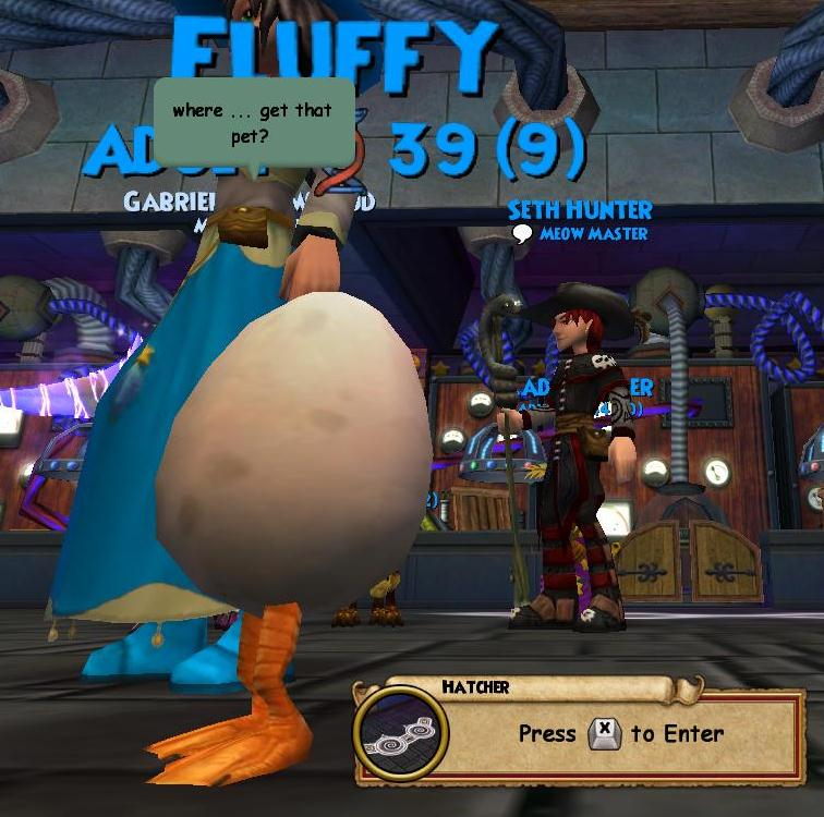 The Friendly Necromancer Pet Egg Pet Of The Day