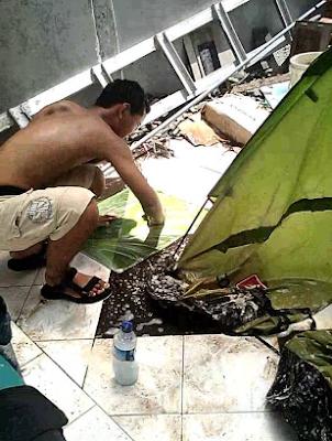 http://www.carabersih.com/2017/05/tips-dan-trik-cara-mencuci-tenda-dome-yang-benar.html