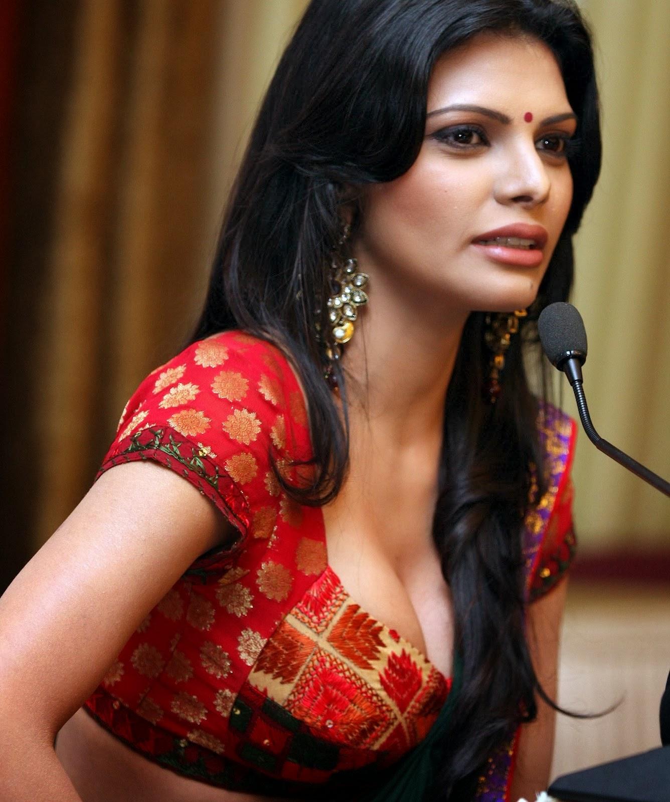 Sherlyn Chopra Naked Photoshoot in Playboy