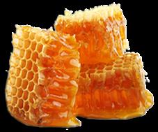 manfaat madu asli