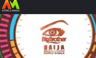 how-to-vote-for-housemates-on-big-brother-naija-season-3