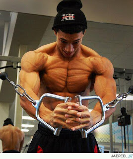 bodybuilding wallpapers ,bodybuilders
