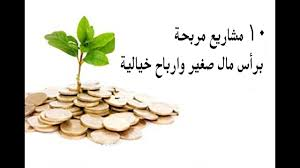 دراسة جدوى أفكار 10 مشاريع مربحة فى مصر 2020