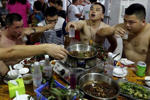 chine chien festival