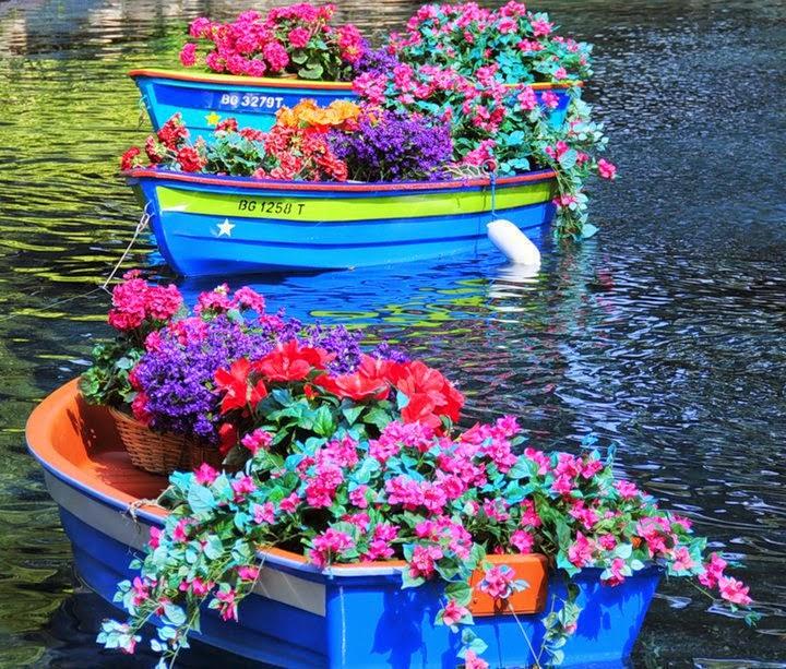 Μάϊος,ο μήνας των λουλουδιών!!!