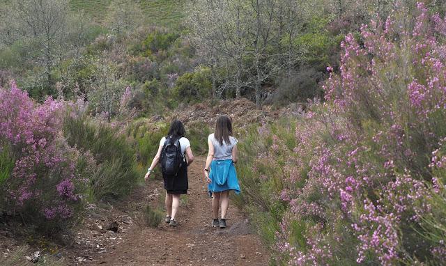 Dos chicas caminando entre matorrales con flores