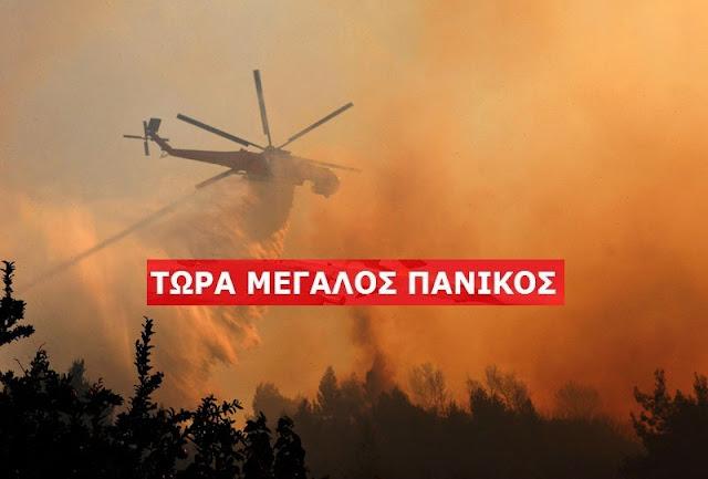 ΕΚΤΑΚΤΟ: Πολύ ισχυρή πυρκαγιά στην Πελοπόννησο!