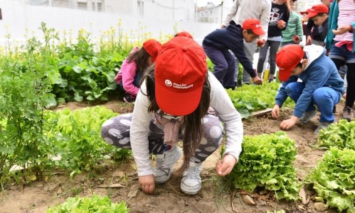 Crianças a plantar