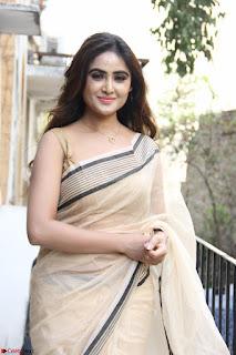 Sony Charishta in Brown saree Cute Beauty   IMG 3585 1600x1067.JPG