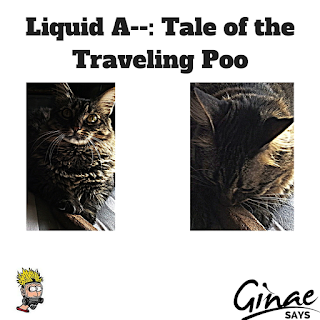 Liquid A--: Tale of the Traveling Poo