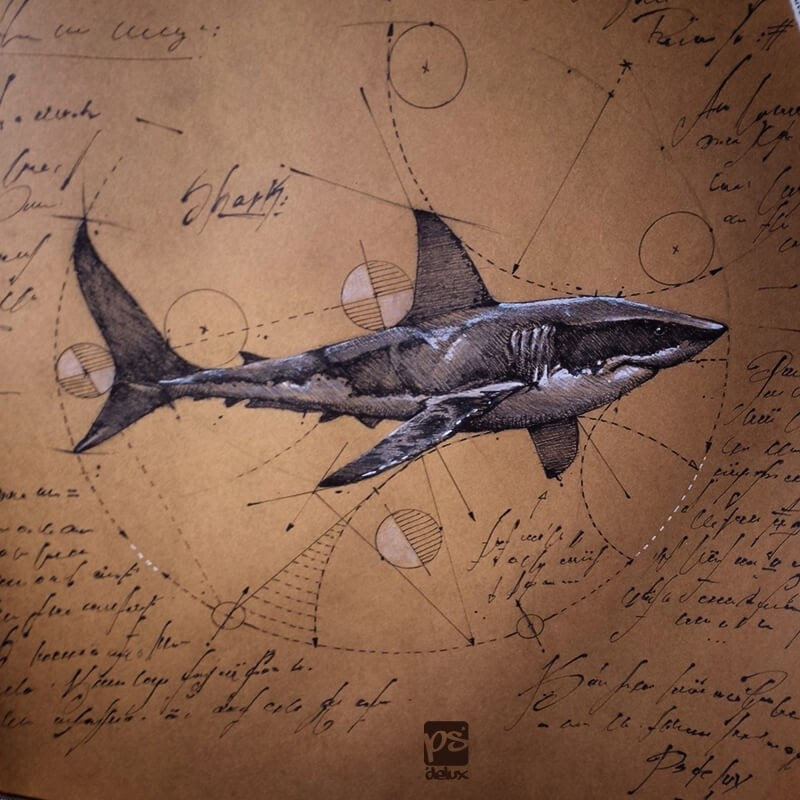 04-Shark-psdelux-Geometric-Animal-Sketches-and-1-Alien-www-designstack-co