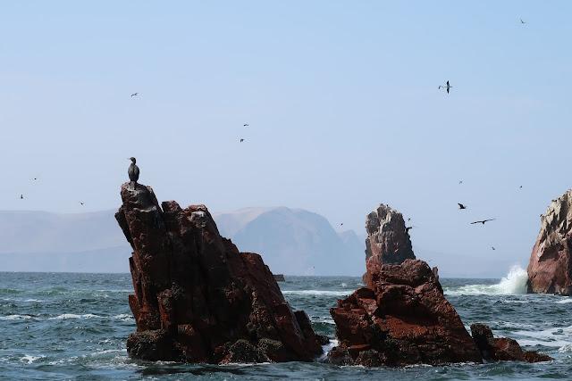Islas ballestas en peru