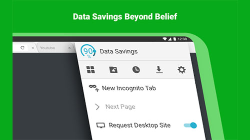 Browser Data Savings