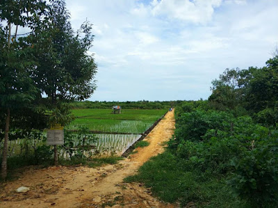 Kavling Kurma Kalimantan Timur