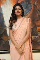 Eesha Rebba in beautiful peach saree at Darshakudu pre release ~  Exclusive Celebrities Galleries 027.JPG
