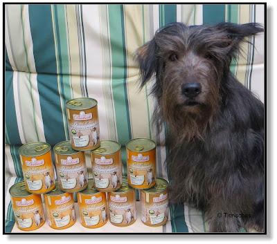 fettarmes Hundefutter von Bubeck