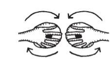 Mẹo massage giúp kích thích vòng 1 cực kỳ đơn giản