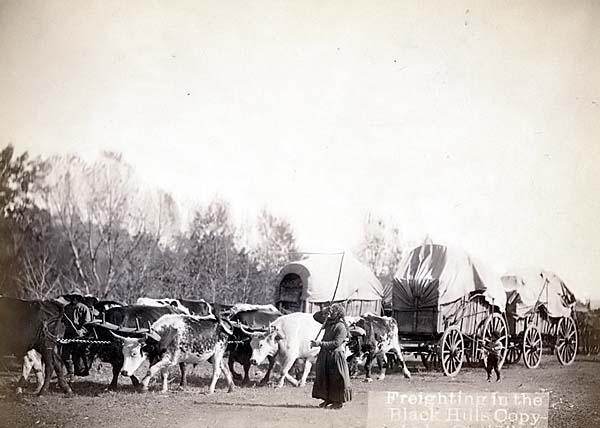 The American Cowboy Chronicles Old West Wagon Trains West!