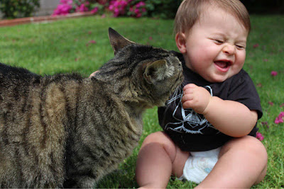cute-baby-with-cat-funny-hd-wallpaper