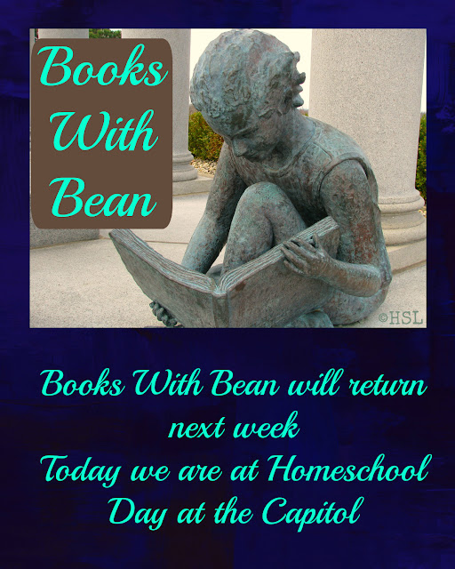 books with bean, book reviews by teens