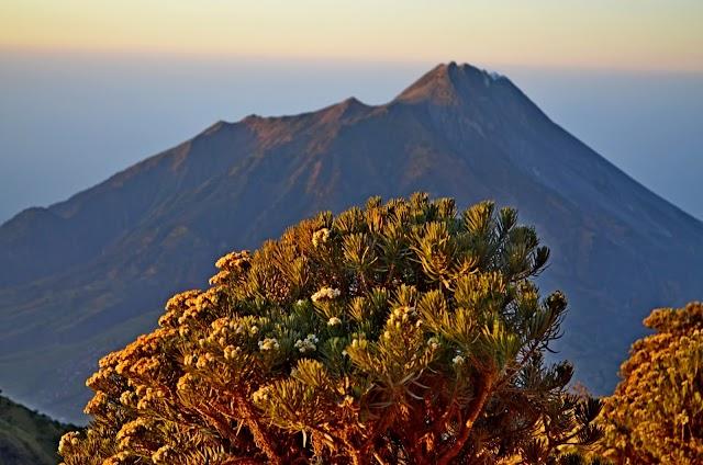 Estimasi Biaya Pendakian Gunung Kerinci - Guide, Porter, Sewa Alat, Transportasi, Penginapan