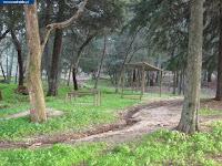 https://castvide.blogspot.pt/2018/04/photos-garden-parques-e-jardins-varios.html