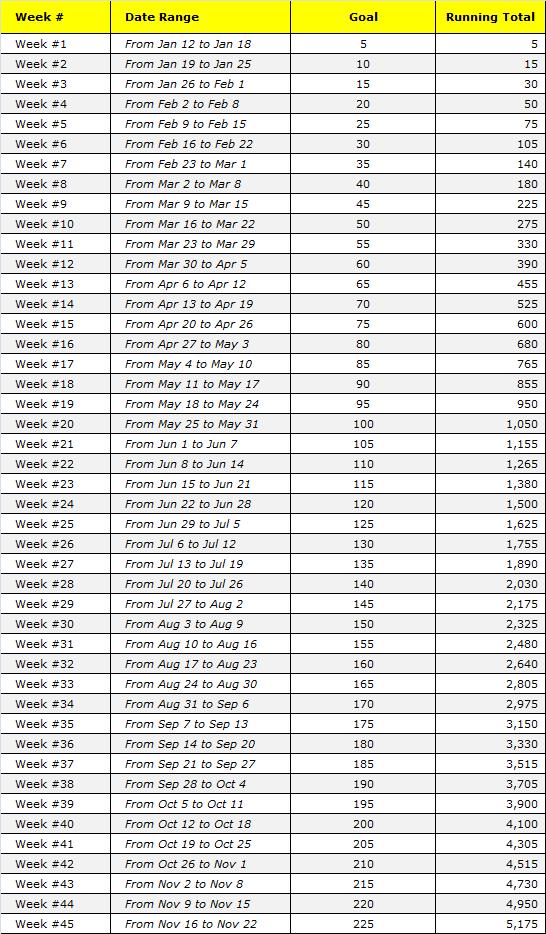 45-week Money Challenge