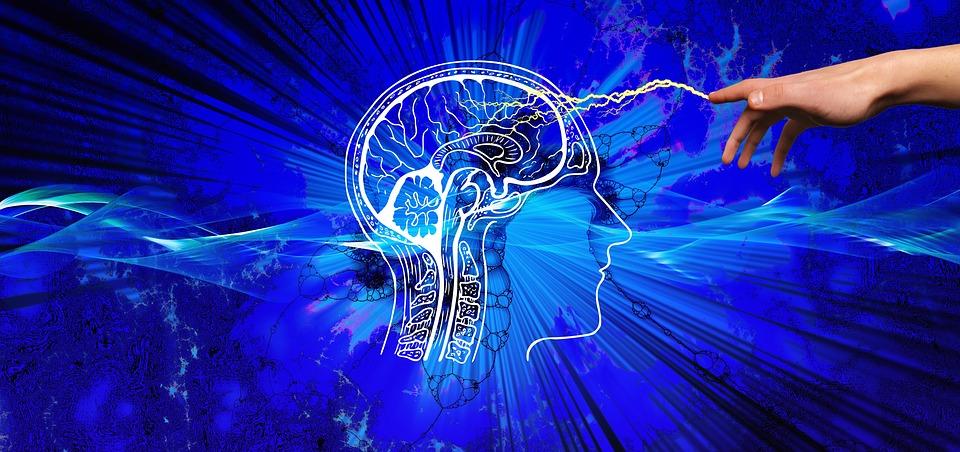 दिमाग से जुड़े रोचक तथ्य,Relation Between Intellect & Brain,Dimag ka vajan kitna hota he