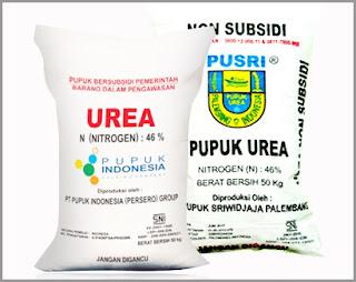 Pupuk Urea