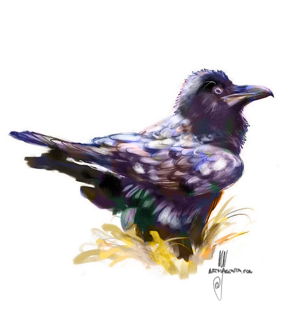 Raven bird painting by Ulf Artmagenta