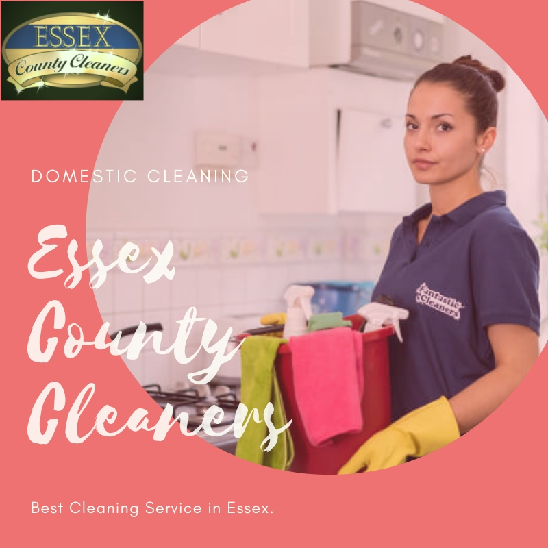 Choose Professional Domestic Cleaning Agencies for a thorough