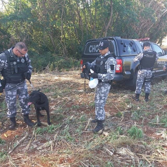 UBIRATÃ: População se reunirá para varredura em busca do jovem Luiz que está desaparecido
