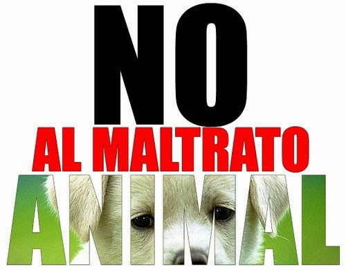 no-al-maltrato-animal